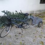 Ciclista a los 50