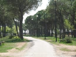 El parque de la Pulgosa